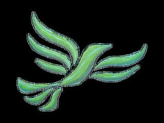 Green Libby crayoned (GreenLibDems.org.uk)