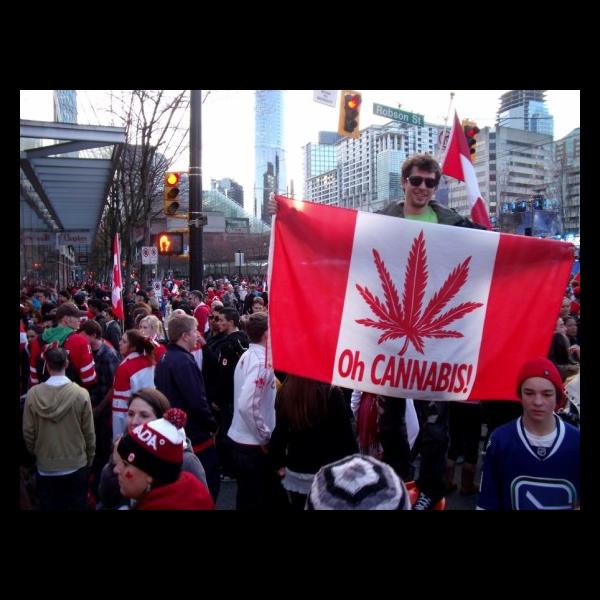 canadian flag with cannabis leaf