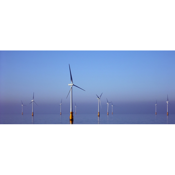 Wind Turbines (By Barrow_Offshore_wind_turbines.jpg: Andy Dingley derivative work: Papa Lima Whiskey 2 [CC BY-SA 3.0 (http://creativecommons.org/licenses/by-sa/3.0)], via Wikimedia Commons)