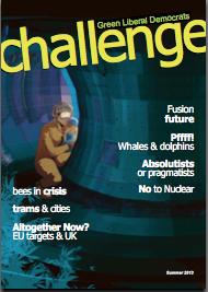 Summer 2013 Challenge cover art