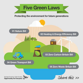 Five Green Laws Infographic