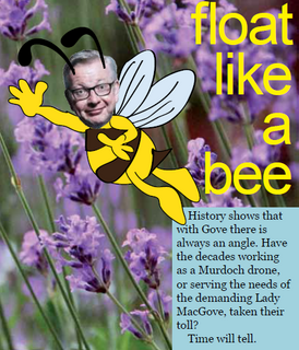 Gove floats like a bee against Neonicotinoids (image © 2017 Christian Vassie)
