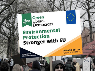 Environmental Protection - Stronger with EU (greenlibdems.org.uk)