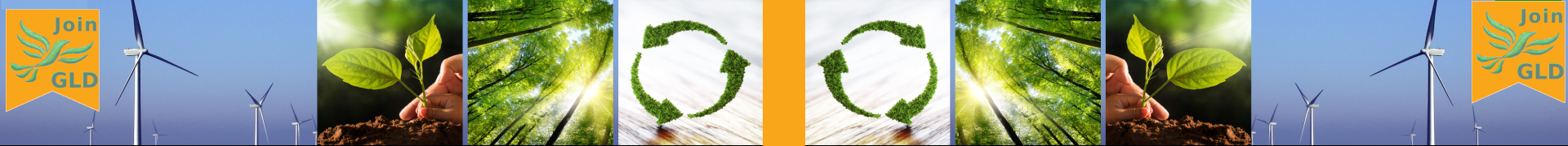 GLD banner 20200424 (greenlibdems.org.uk)