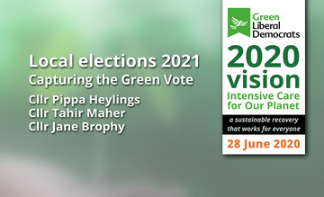 Local Elections 2021 - Capturing the Green Vote (From GLD 2020 Vision Conference) (greenlibdems.org.uk)