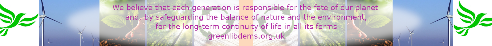 GLD banner with constitution text about our beliefs 2021 (greenlibdems.org.uk)
